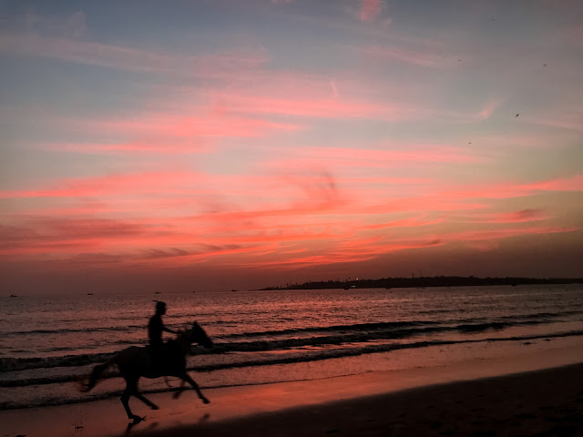 horse-ride, versova beach, sunset photo