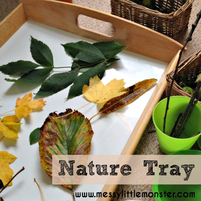 Autumn (Fall) nature tray / table for kids. A simple activity for toddlers and preschoolers.