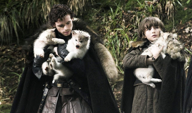 Robb Stark, Bran Stark, 8ª Temporada, Juego de Tronos, Game of Thrones