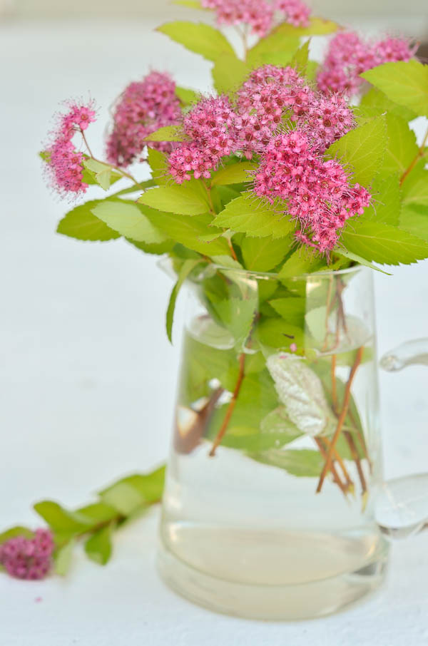Add water to a glass creamer as a unique container for designing a floral arrangement.  |  www.andersonandgrant.com