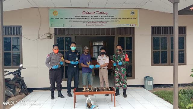 Karsono Ungkap Karantina Pertanian Merauke Tahan Tanduk Rusa Tanpa Dokumen Asal Papua New Guinea