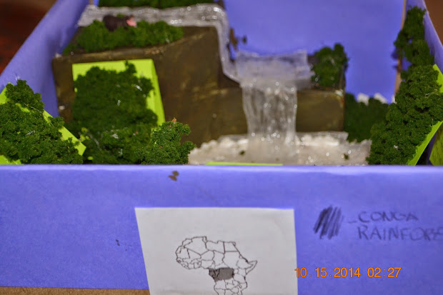 Shoebox Diorama Forest ✓ All About Shoes