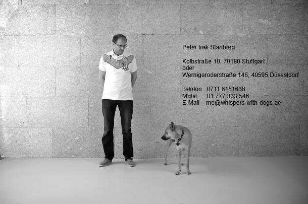 Kolbstraße 10, 70180 Stuttgart, Tel. 0711 6151638