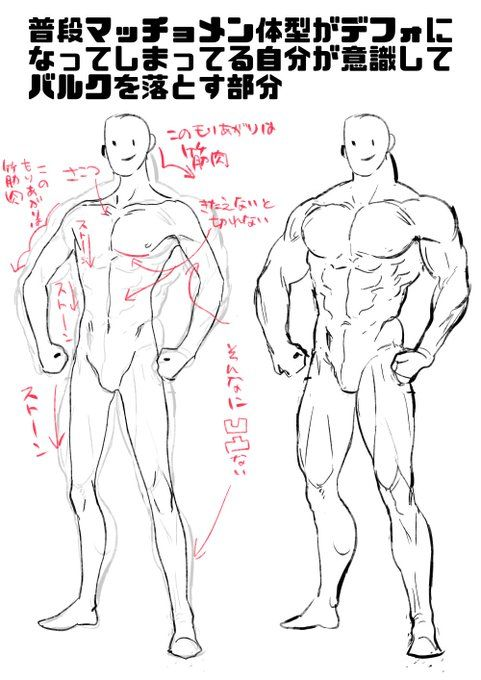 Art Tutorial Muscles Drawing References Free Artbooks And Drawing Tutorial Books Daily