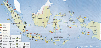 Persebaran Flora di Indonesia Secara Lengkap