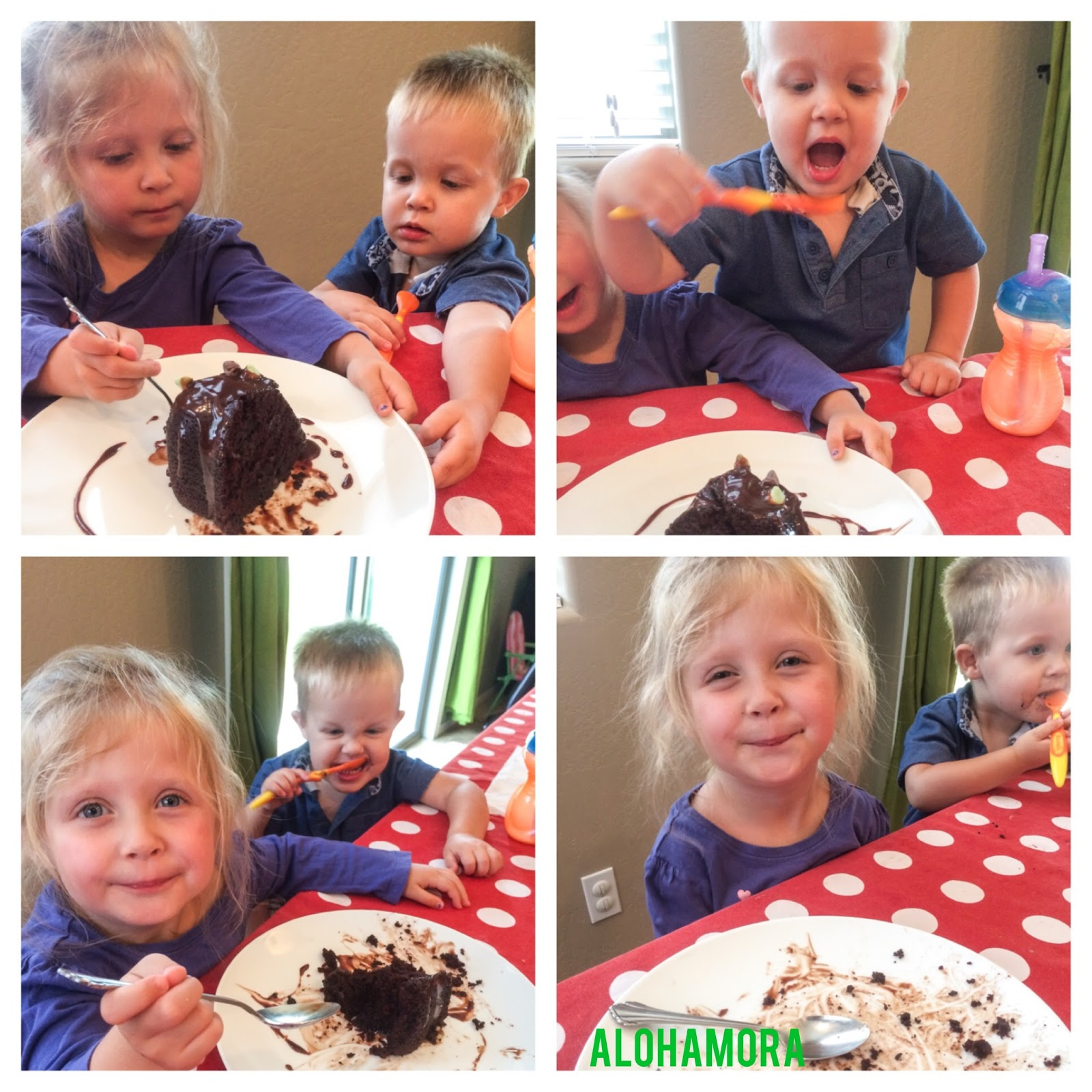 "My kiddos take their job of ""Taste Testers"" very seriously and are always anxious to try something out.  They were big fans of the Chocolate Mint Devil's Food Cake with a Chocolate Mint Ganache.  Alohamora Open a Book http://www.alohamoraopenabook.blogspot.com/"