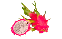 dragon fruit clipart free