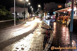 Avenida de Charles Darwin at night
