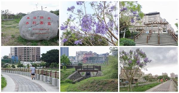 台中大里|旱溪排水水利園區|藍花楹樹林|生態池|堤頂步道散步