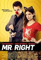 Sinopsis Film MR. RIGHT (2016)
