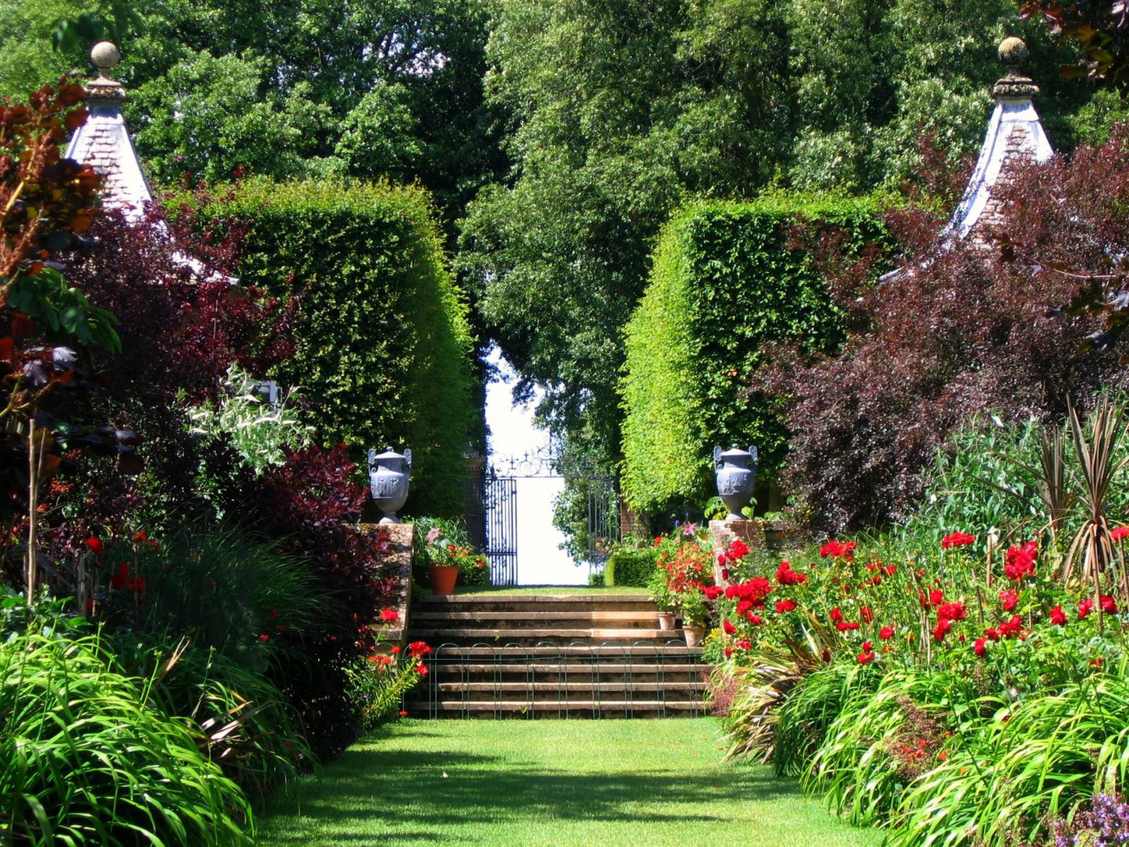 Funny Image Collection Beautiful Flower Garden Wallpapers