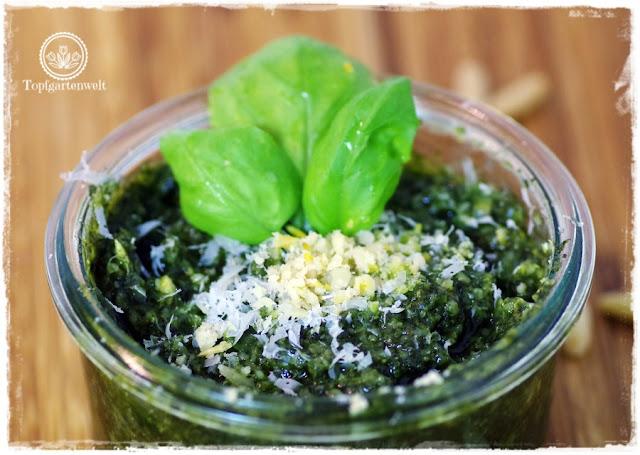 Pesto Genovese einkochen damit es lange hält - Foodblog Topfgartenwelt