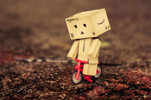 Cute Kitty Wallpaper Desktop Cute Danbo Life Of Danbo