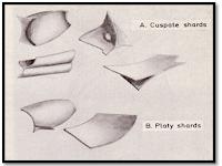 Bahaya Glass Shard, Abu Vulkanik yang Dapat Menyayat Paru-Paru
