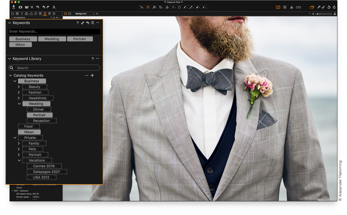 Capture One Pro Full version free download