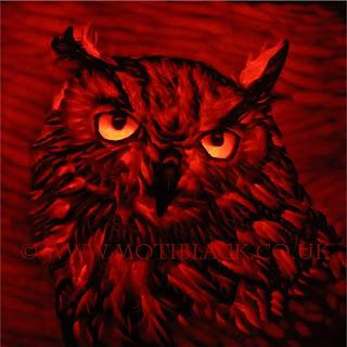 Owl carved onto a pumpkin