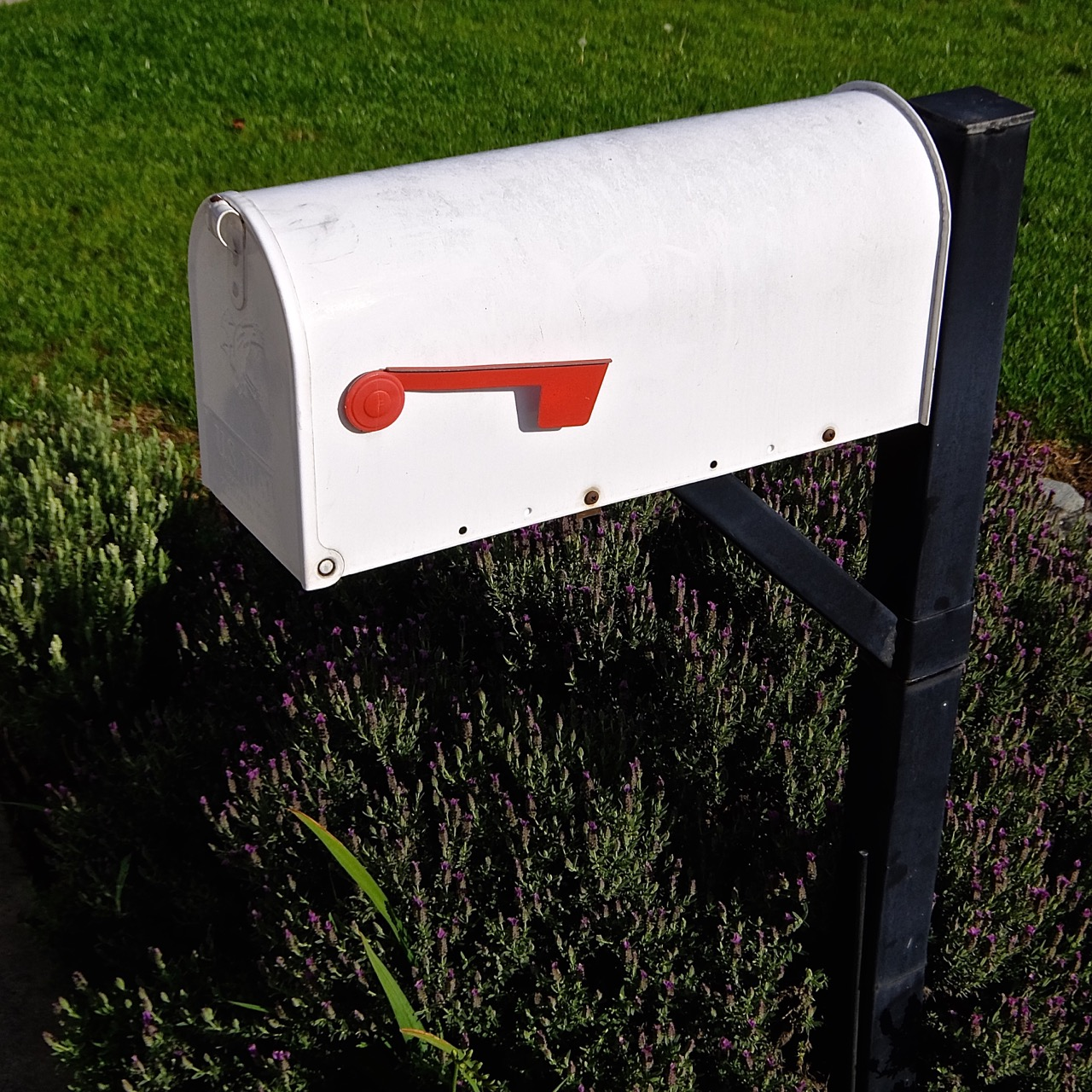 U.S. Mailbox by Cliff Hutson
