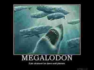 foto megalodon
