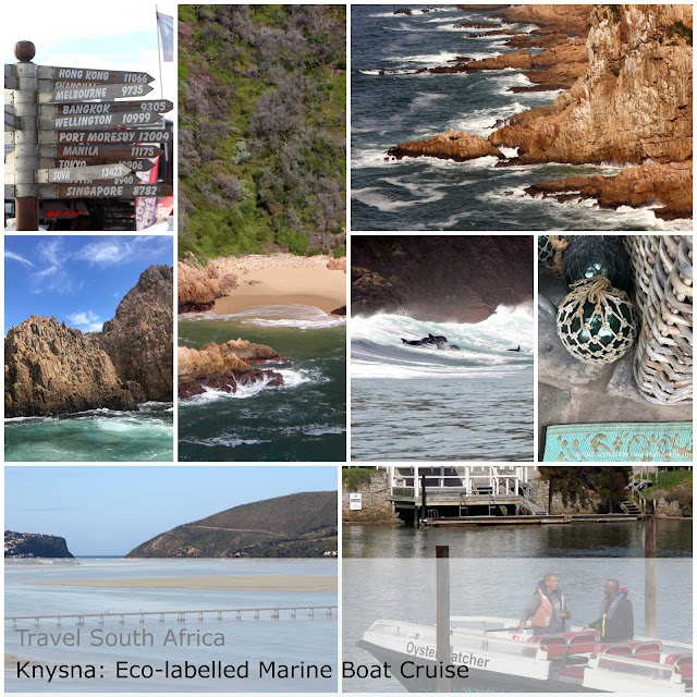 Eco labelled marine boat cruise with Ocean Odyssey in Knysna in South Africa.