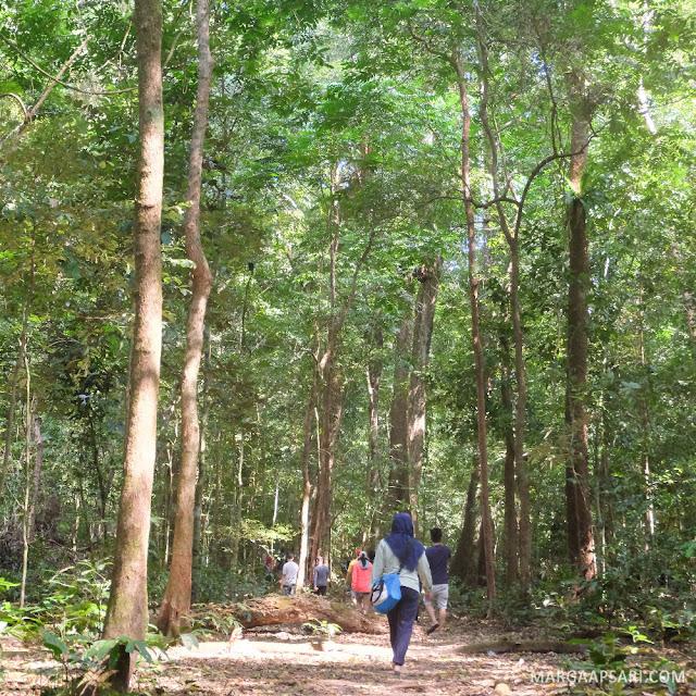 Open Trip ke Pulau Peucang - Trekking Karang Copong