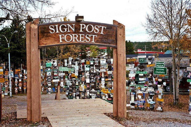 Sign Post Forest 5