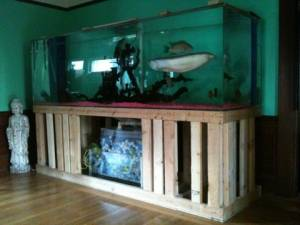 Giant Aquariums: 400 gallon aquarium / fish tank   $1700 (Stockton)