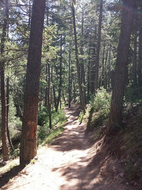 Lair o' the Bear and Corwina Park - Early Morning Run blog