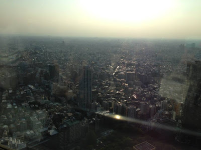 View from Tokyo Metropolitan Governmental Building