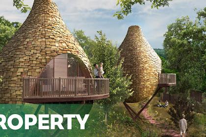 New bird nest houses, Read Now