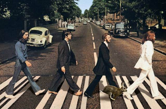 Beatles και φονικό κουνέλι - μαζί στο Abbey Road