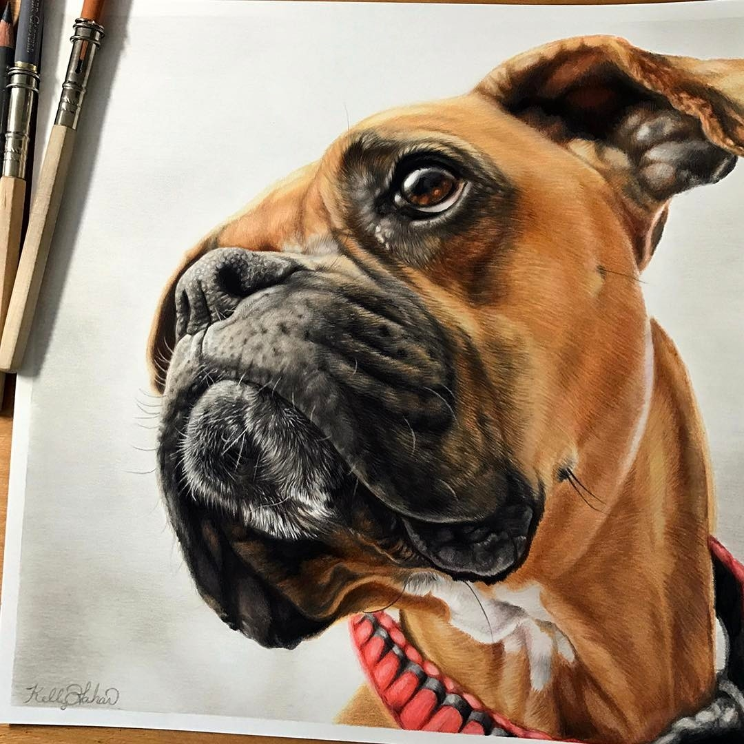 09-Ella-Kelly-Lahar-Realism-with-Animal-Portrait-Drawings-www-designstack-co