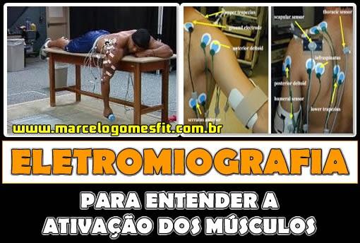 Eletromiografia - Para entender a ativação dos músculos