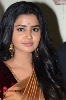 Actress Anupama Parameswaran Stills in Silk Saree with Shatamanam Bhavati Team at Sandhya Theater  0010.JPG