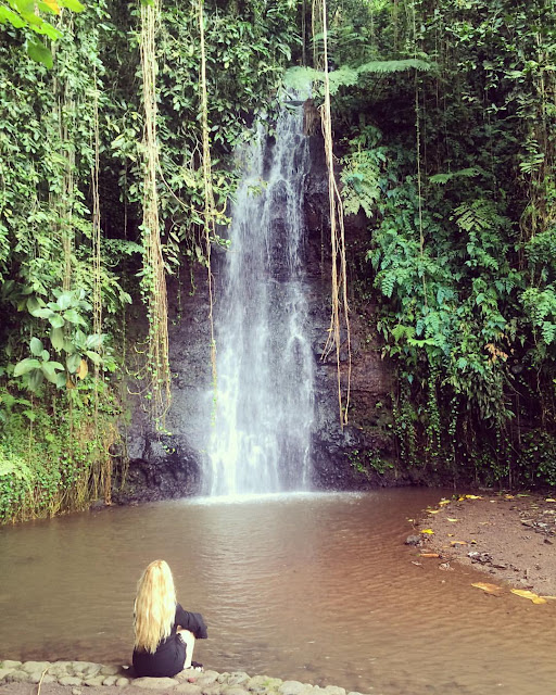 Tahiti Waterfall in Vaipahi Gardens