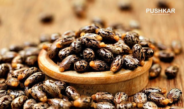iherb-айхерб-castor oil-касторовое масло