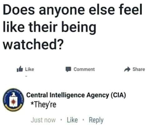 Funny Does Anyone Else Feel Like Their Being Watched? CIA Joke Picture