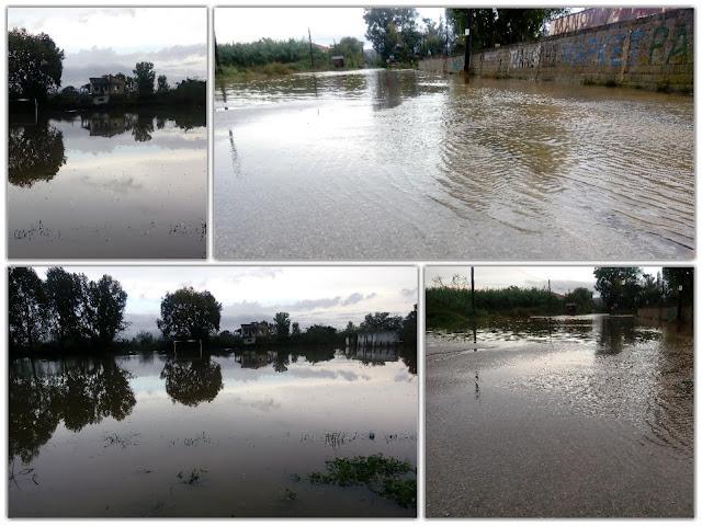 ΑΡΤΑ: Πλημμύρισαν σπίτια, κτηνοτροφικές
