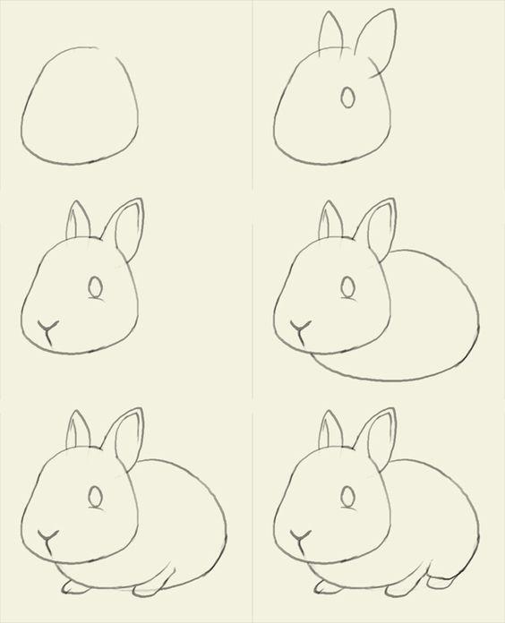 Como Hacer un Boceto Animales Ardilla Conejo y Gato