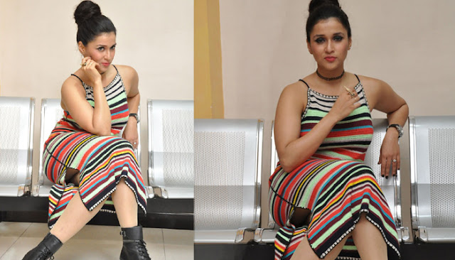 Mannara chopra at Jakkanna Platinum Disc Function Photos