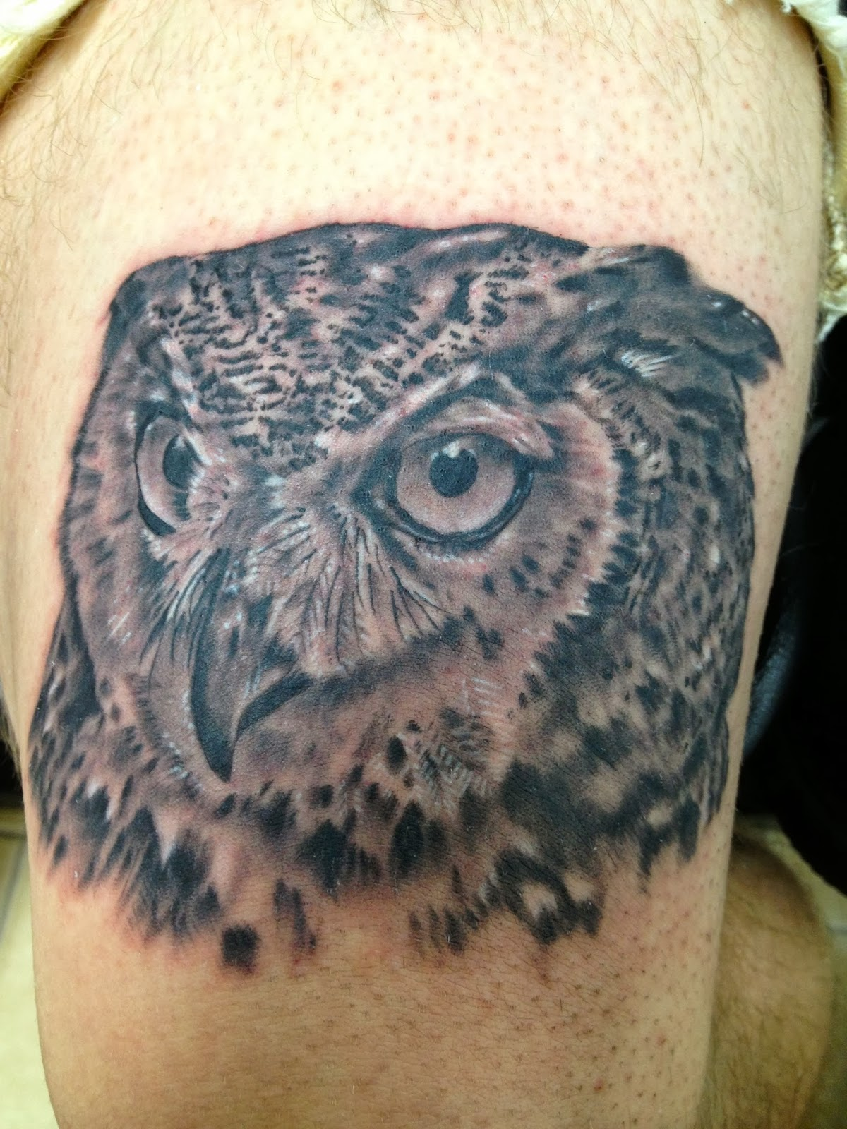 barn owl tattoo - HD1200×1600