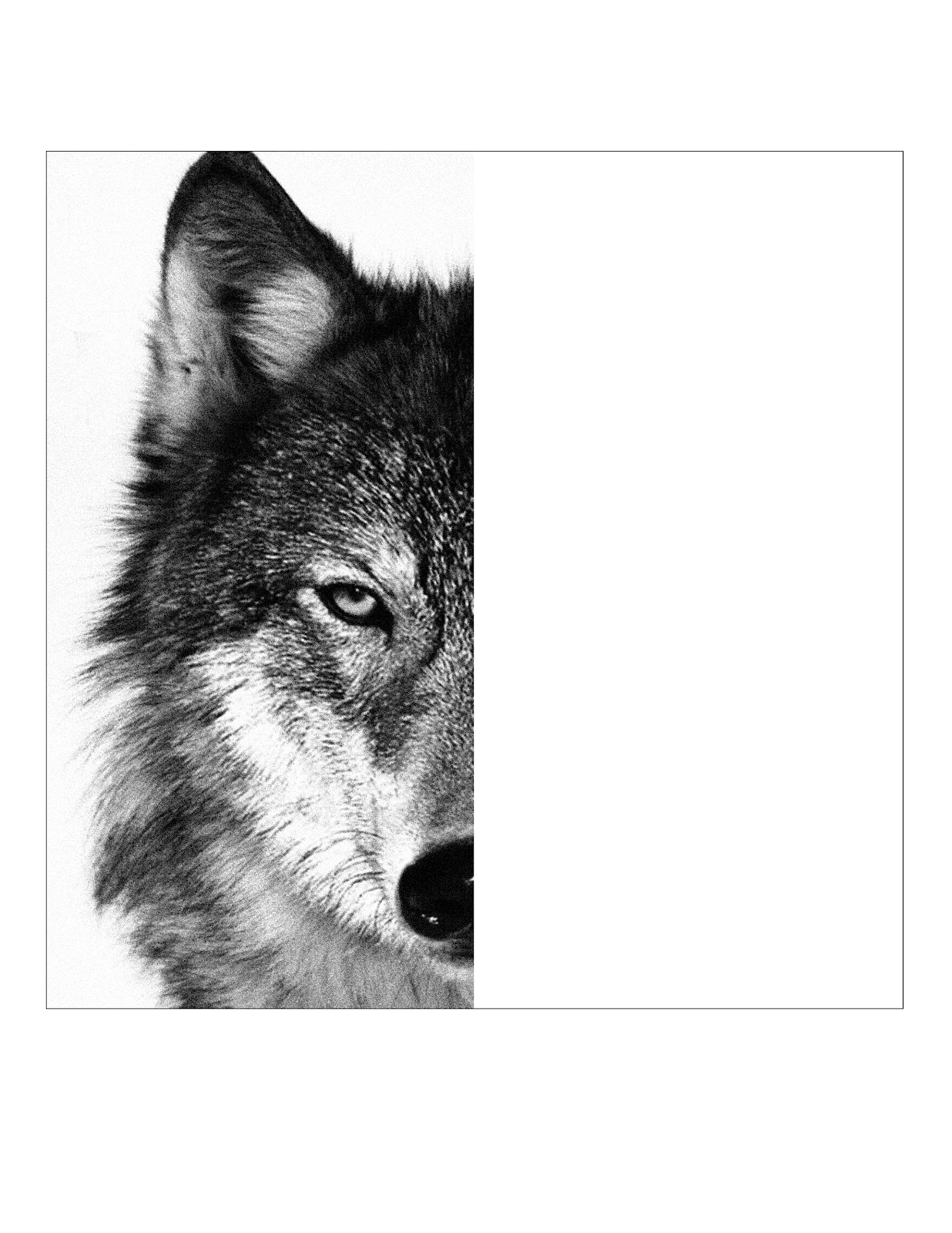 Wolf Face Template