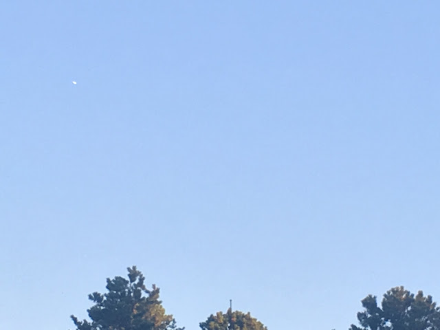 ufo sightings reported to mufon