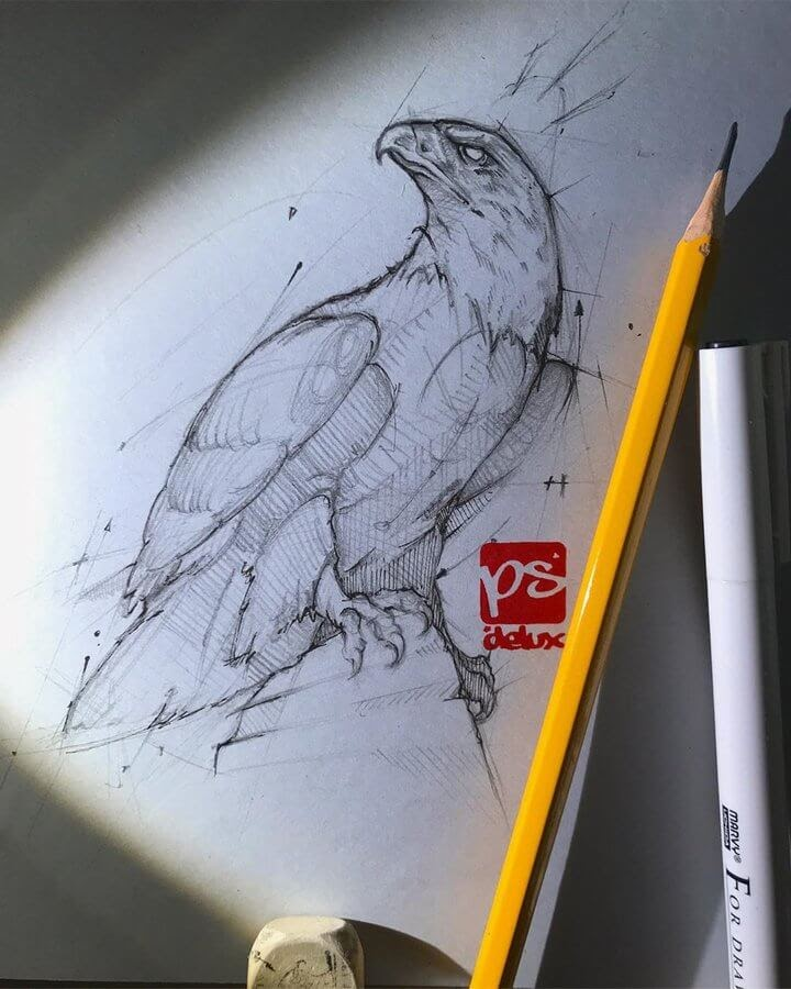 06-Eagle-Psdelux-Fineliner-Ink-and-Pencil-Animal-Drawings-www-designstack-co