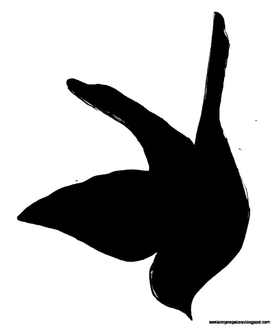 Simple Flying Bird Silhouette  Amazing Wallpapers