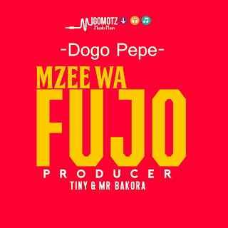 Download Mp3 | Dogo Pepe - Mzee Wa Fujo (Singeli)