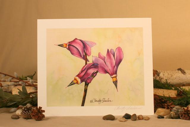 Giclee Print of Shooting Stars Graceful by Christy Sheeler Artist