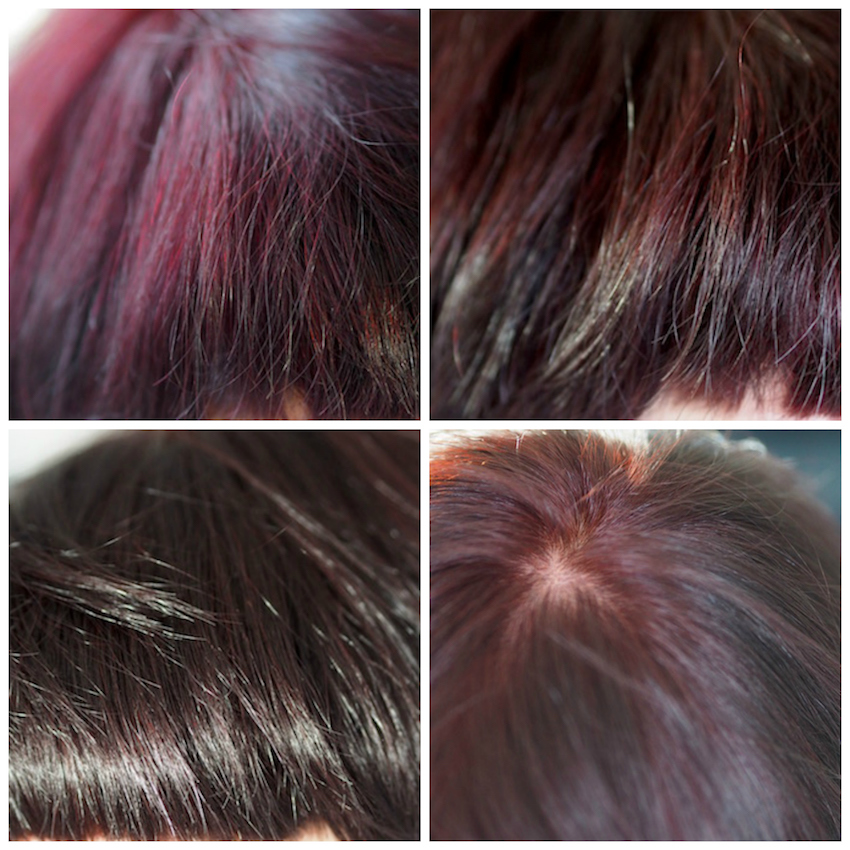 Garnier Olia Hair Colour in Deep Cherry 3.6 in different light