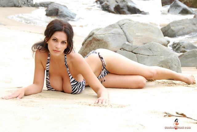 Denise Milani Beach Zebra HD Sexy Photoshoot Hot Photo 21
