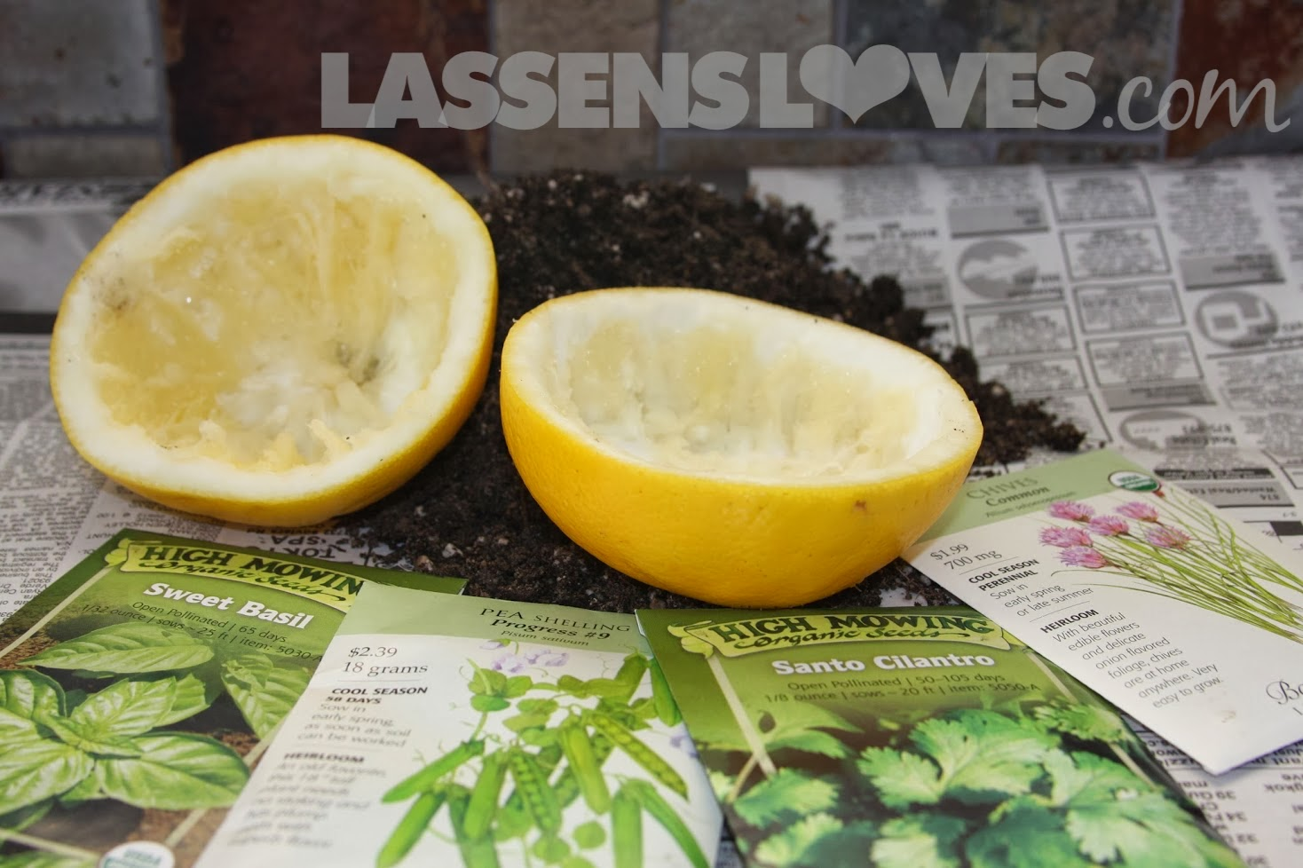 grapefruit+rind+garden