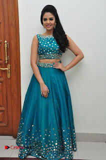 Sree Mukhi Pictures at Gentleman Audio Launch  0152